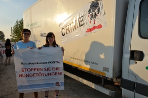 FOUR PAWS protest against illegal mass killing of stray dogs in Bucharest / Romania