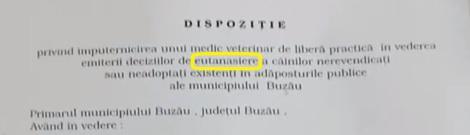 buzauvet5