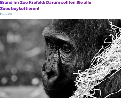 Screenshot_2020-01-04 Brand im Zoo Krefeld Darum sollten Sie alle Zoos boykottieren .png